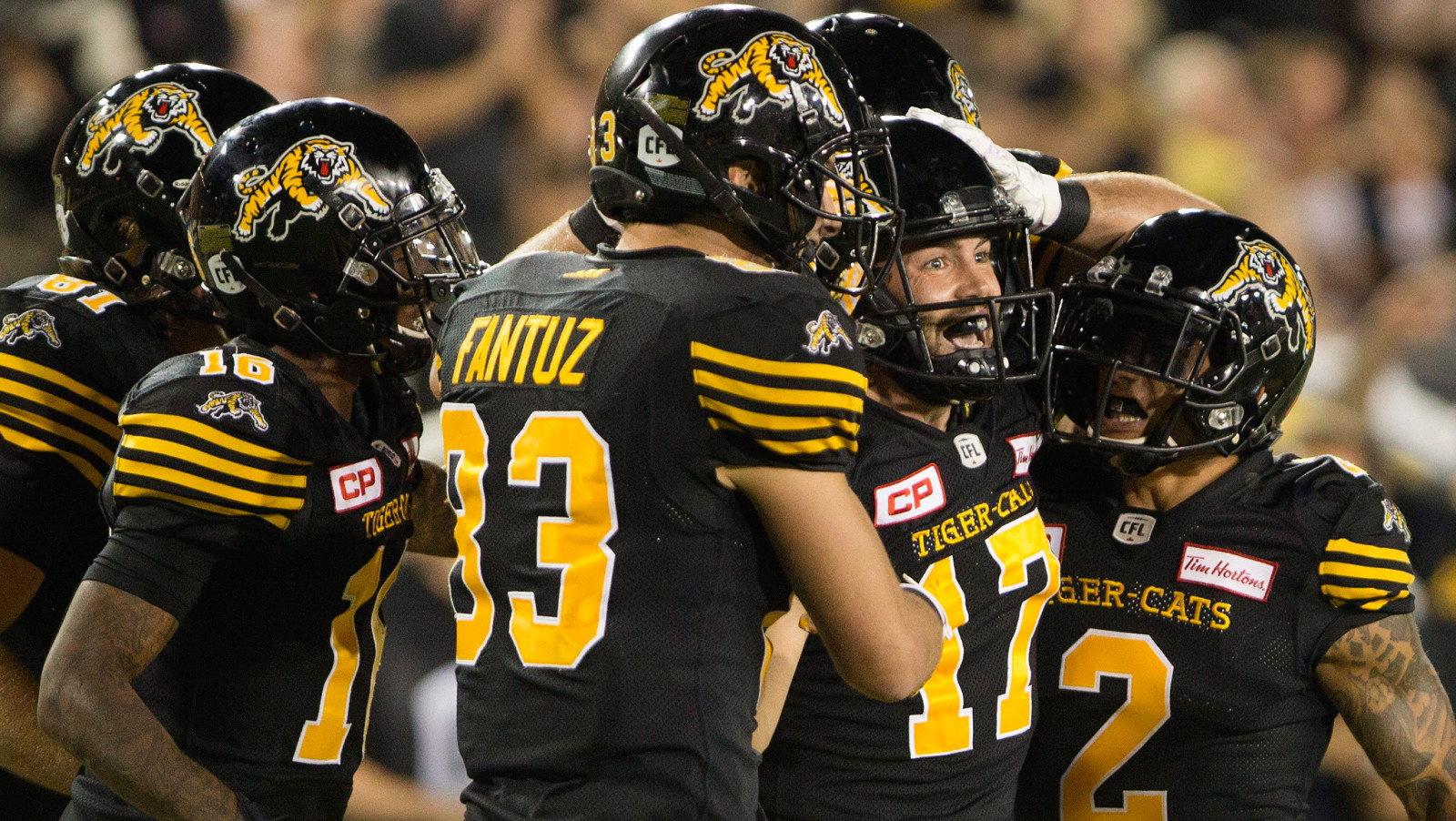 Image result for hamilton tiger cats