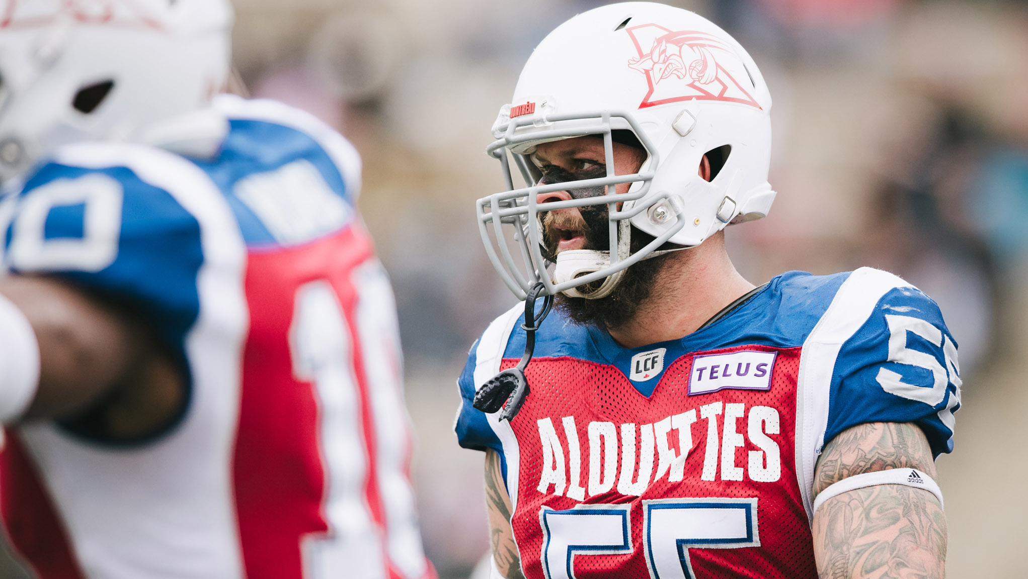 Als ink Knapton to a one-year deal; release Jabar Westerman