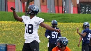 Toronto Argonauts photo