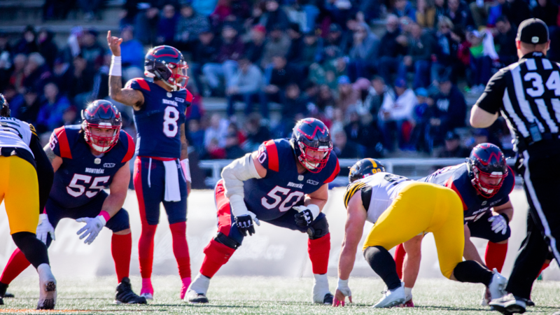 The 2019 season review: October 26, a catfight in the nest
