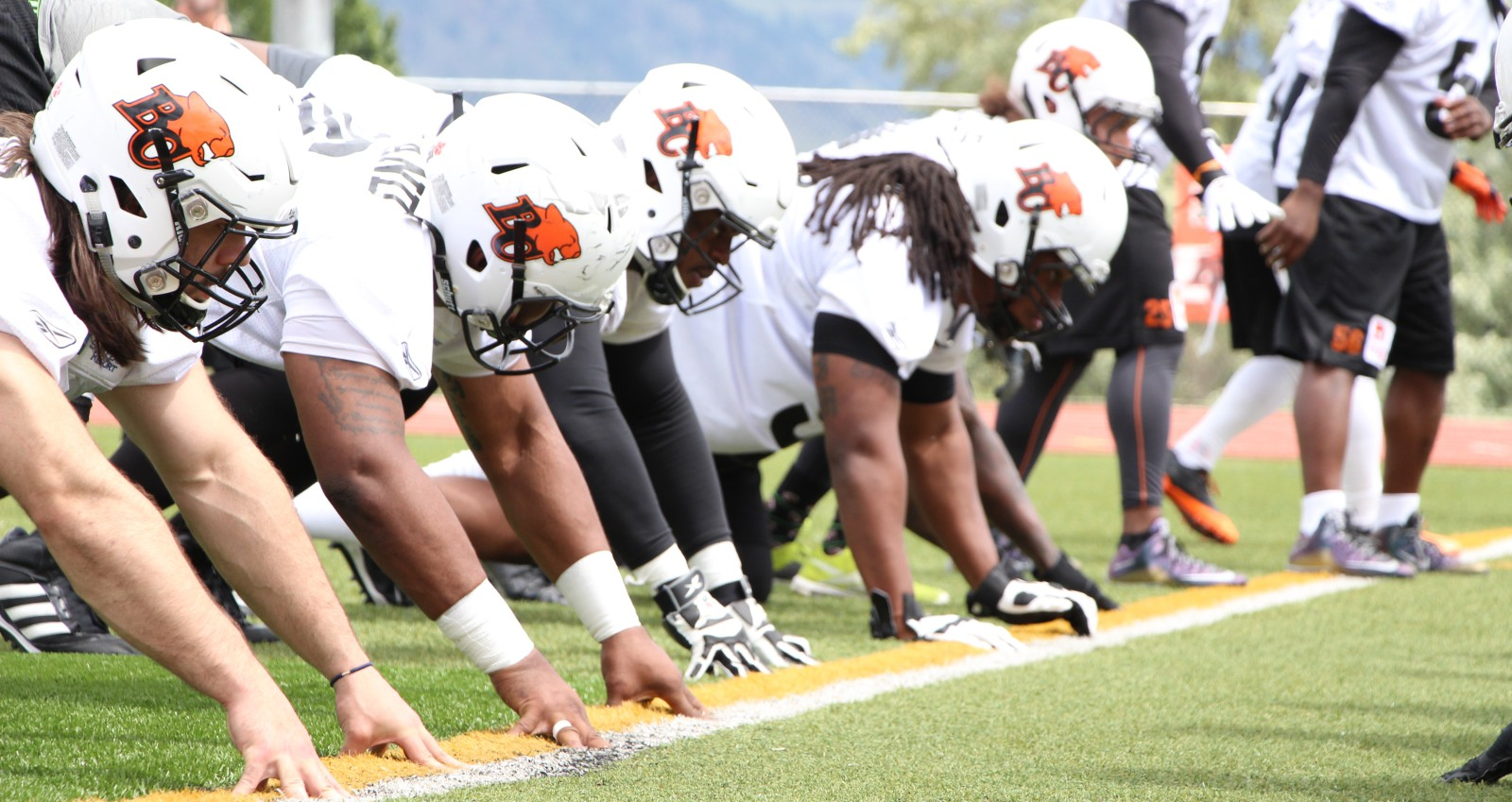 Image result for BC LIONS FREE AGENT CAMPS