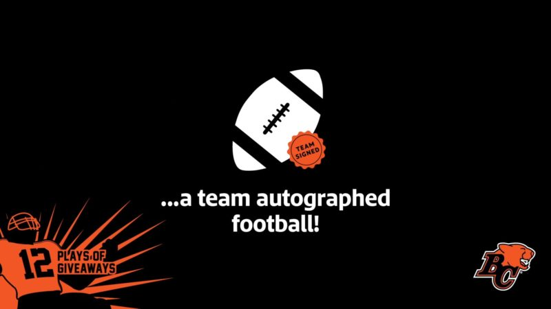 12 PLAYS OF GIVEAWAYS: DAY 10- 10 TEAM AUTOGRAPHED FOOTBALLS
