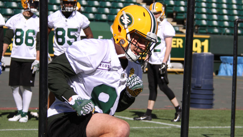 Ellingson Excited For A Fresh Start In A New Time Zone