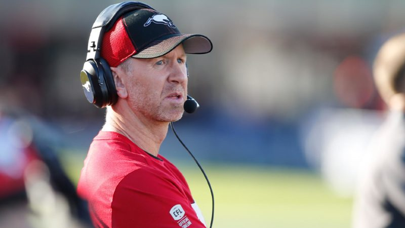 FA20: Dickenson's Stampeders more active than usual
