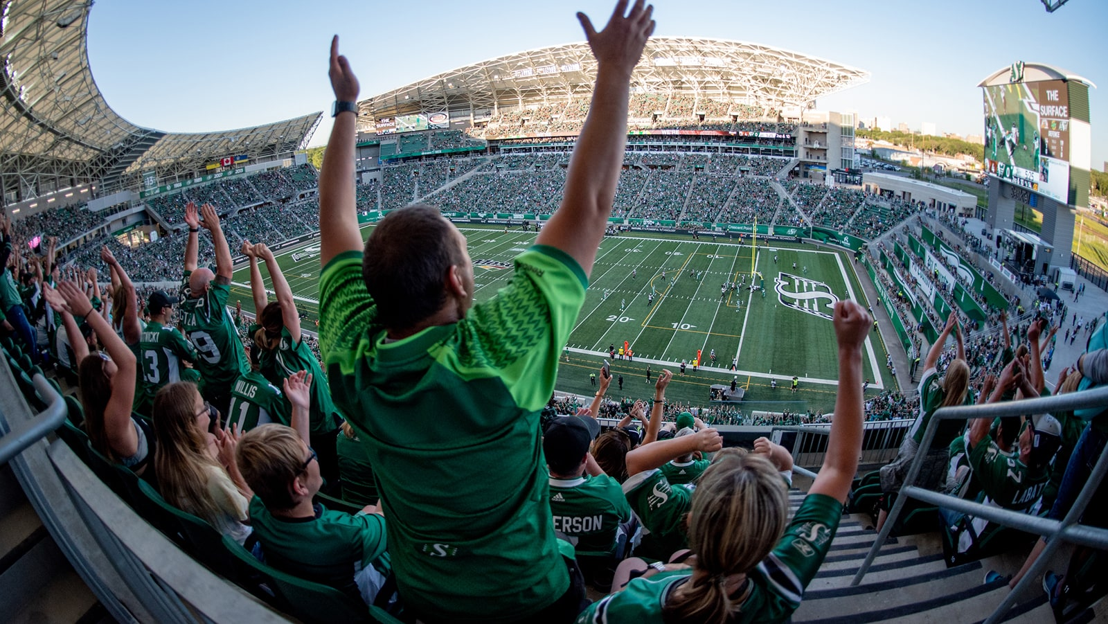 Image result for mosaic stadium crowd